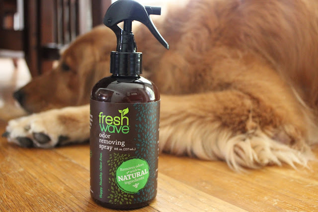 fresh wave odor removing spray for pet odors #happyhealthyodorfree
