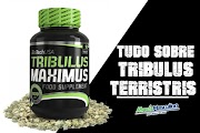 Tudo o Que Você precisa saber sobre  Tribulus Terristris