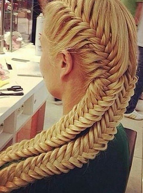 amazing braid hairstyle idea