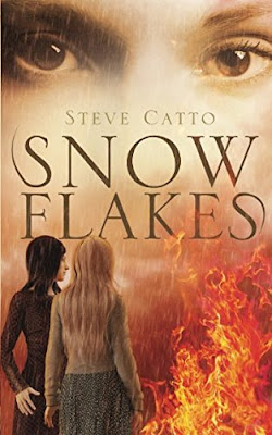 snowflakes, book, steve-catto
