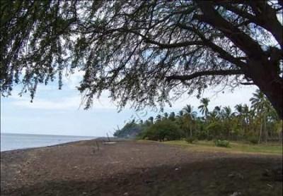 93+ Wisata Situbondo, Pantai Banongan Situbondo Jawa Timur