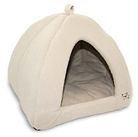 This tent bed is a cozy retreat for your napping cat.