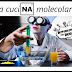 La cucina molecolare: storia e procedimenti
