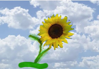 essay on sunflower in english
