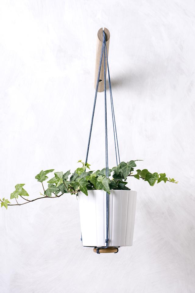 Plant Hangers | Loop Design Studio