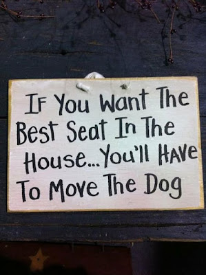 Dog Humor : Move the dog please