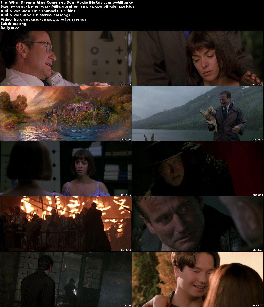 What Dreams May Come 1998 BluRay 350MB Hindi Dual Audio 480p Download
