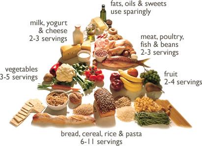 Diet Vegetarian Pada Ibu Hamil, Apa yang Perlu Diperhatikan?