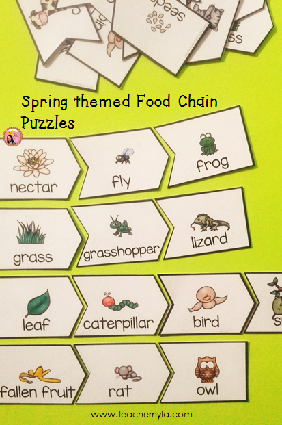 Food-Chain-Activities