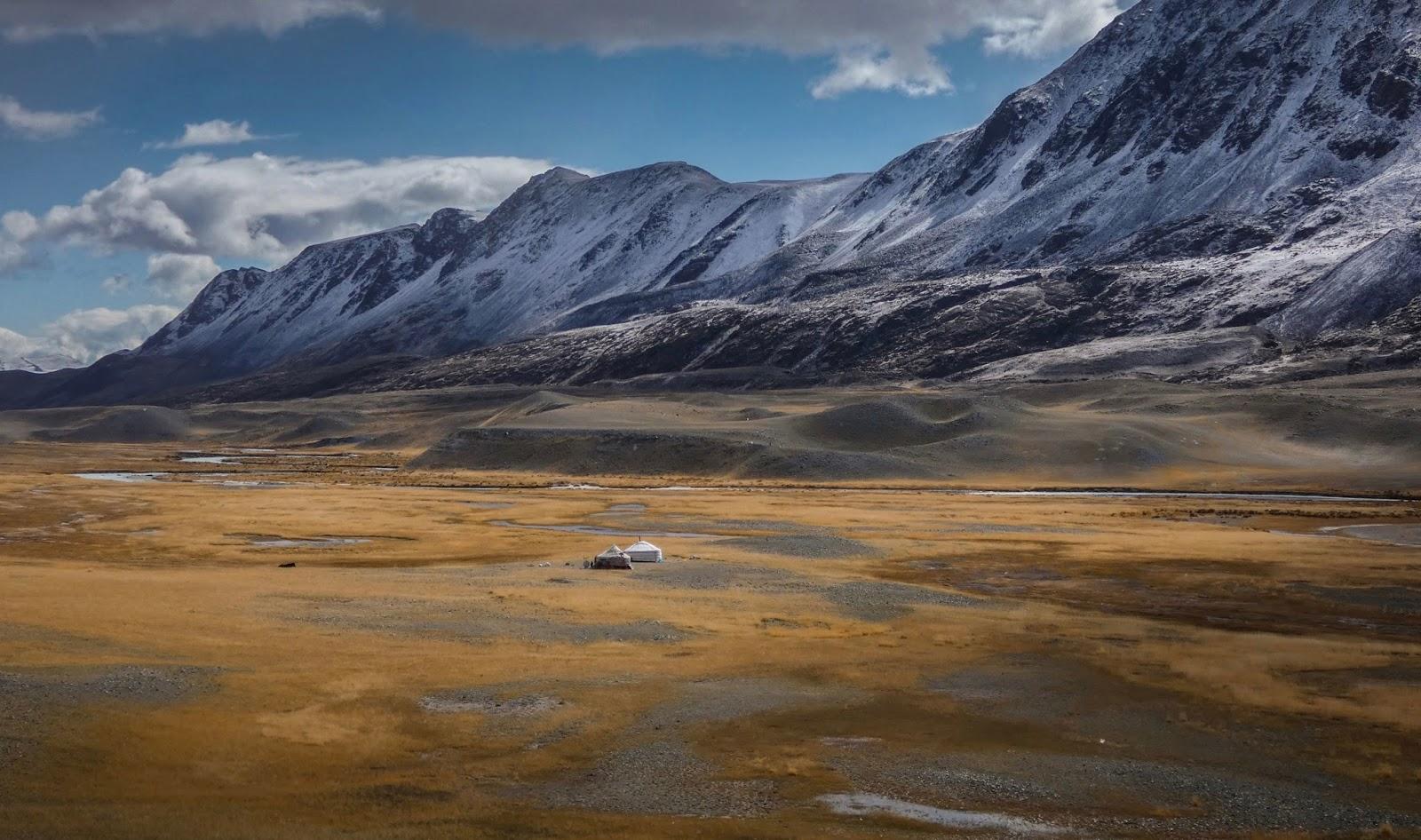 animal UNC Mongolia 2011 P-NEW 10-TUG.