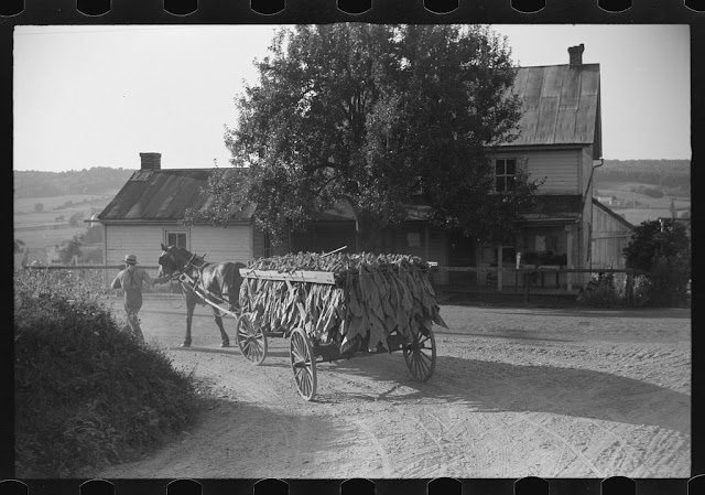 Mennonite farmer Lancaster England 13 May 1941 worldwartwo.filminspector.com