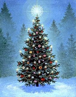 O Pinheiro - Árvore do Natal