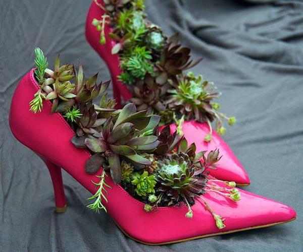 Succulent Garden Ideas: Botanical Junkie : Creative Container Gardening