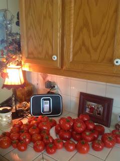 Garden Tomatoes