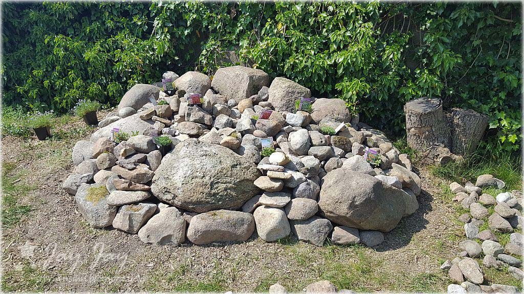 Garten Und Mehr sternensinn garten und mehr der steingarten ist fast fertig