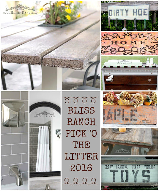Bliss-Ranch.com Top Projects of 2016