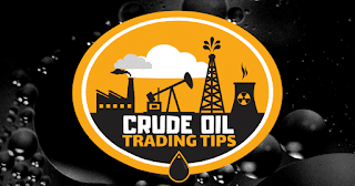 INVENTORY CALL CRUDE OIL INTRADAY : TRADE DATE - 13/03/2019