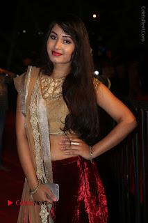 Actress Vennela Stills in Lehenga Choli at Gemini TV Puraskaralu 2016 Event  0040.JPG