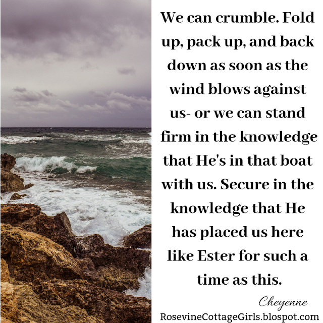 We can crumble. Fold up, pack up, and back down as soon as the wind blows against us- or we can stand firm in the knowledge that He's in that boat with us. Secure in the knowledge that He has placed us here like Ester for such a time as this.