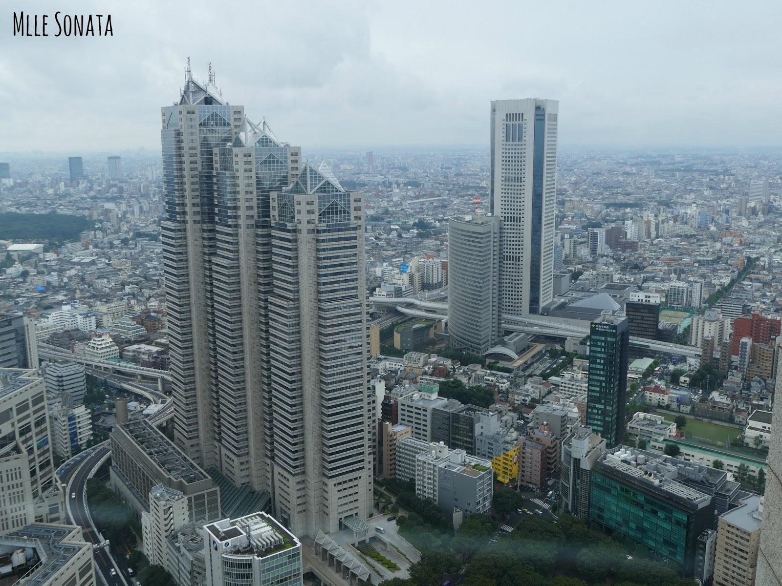 Vue en haut du Tokyo Metropolitan Government Building: entrée gratuite !