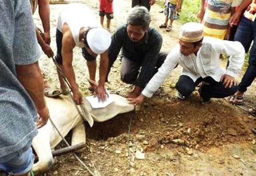 Doa Menyembelih Hewan Qurban Milik Sendiri Dan Untuk Orang Lain