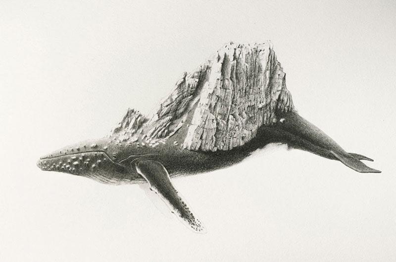 Mateo-Pizarro-05 Bestiary of Improbable Animals III: Drawings by Mateo Pizarro Design