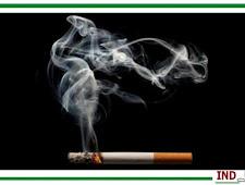 Cara Mudah Membersihkan Paru-Paru Dari Asap Rokok