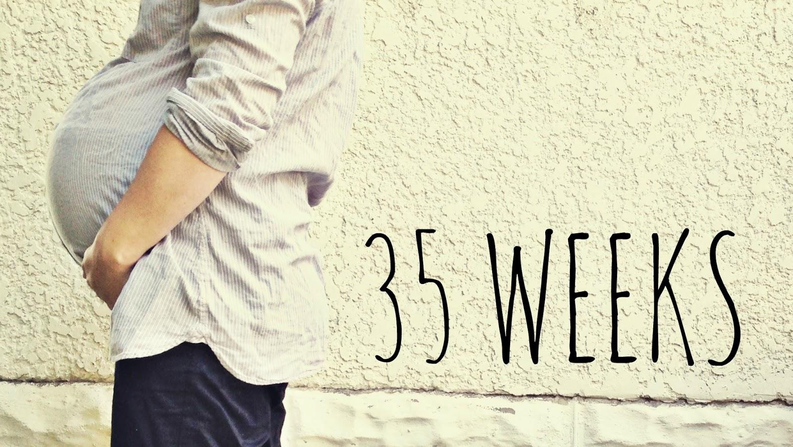 gravid uge for uge: gravid uge 35