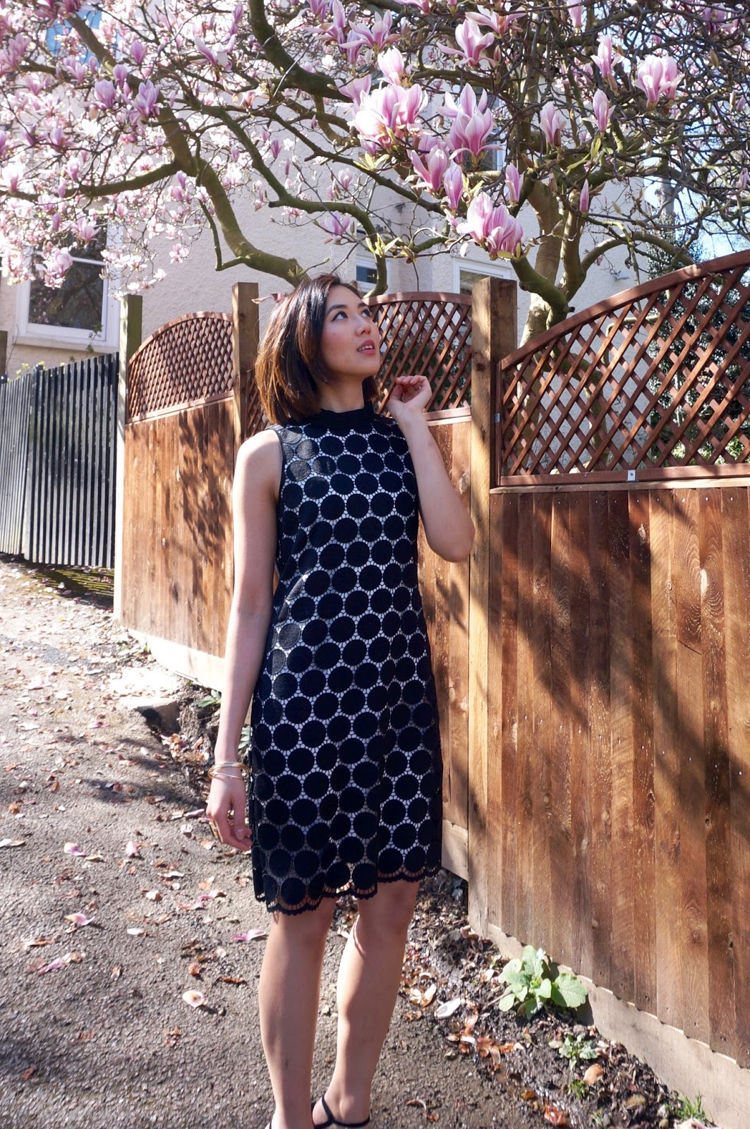 Debenhams Monochrome Dress