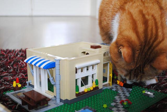 Grote rode kater snuffelt aan een omgevallen lego mannetje in de voortuin van een kapot Lego huis.