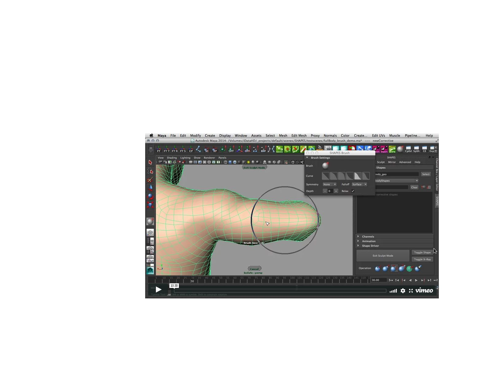 Character/Pipeline TD : Maya Poly topology sculpting