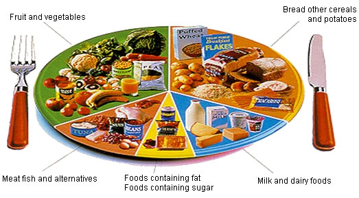 Describe and explain the components of a balanced diet P6, M4