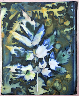Wet Cyanotype_Sue Reno_Image 79