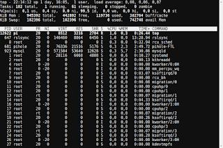 Captura pantalla ejecución comando top