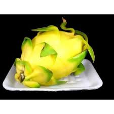 kandungan daging buah naga putih