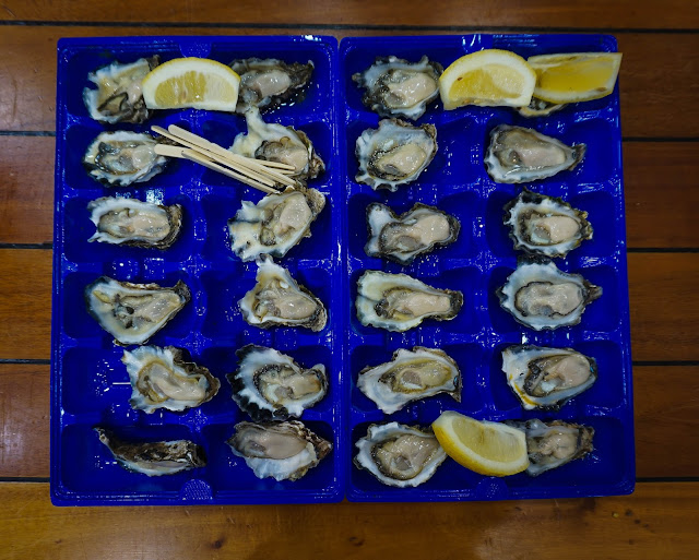 fresh oysters sydney fish market top 10 things to do in sydney travel guide diary
