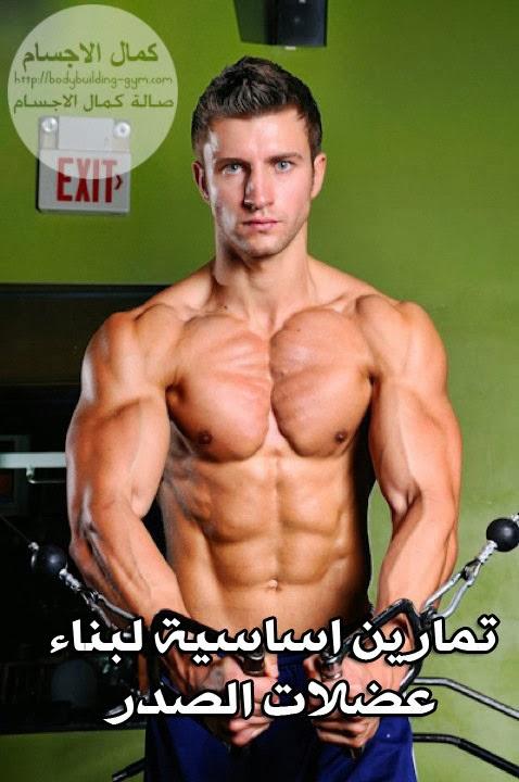 تمارين اساسية لبناء عضلات الصدر بالصور
