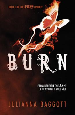 https://www.goodreads.com/book/show/9752790-burn