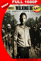 The Walking Dead: Temporada 4 (2013) Latino Full HD BDRIP 1080P - 2010