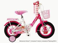12 Inch Wimcycle Strawberry CTB Kids Bike