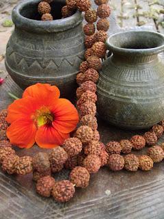 தீட்டு கட்டுப்பாடுகள் எதுவும் ருத்ராட்சத்திற்கு கிடையாது யார் வேண்டுமானாலும் அணியலாம்