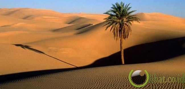 Gurun Sahara (Afrika Utara)