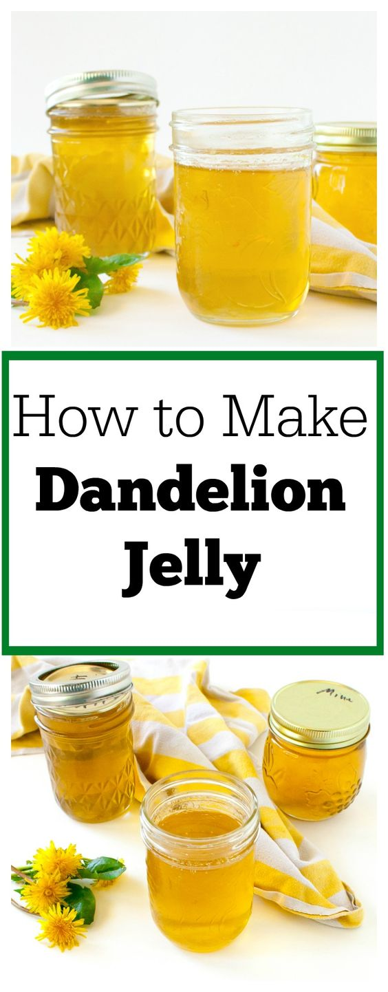 How To Make Dandelion Jelly: Cooking With Weeds