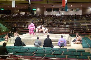 junior sumo
