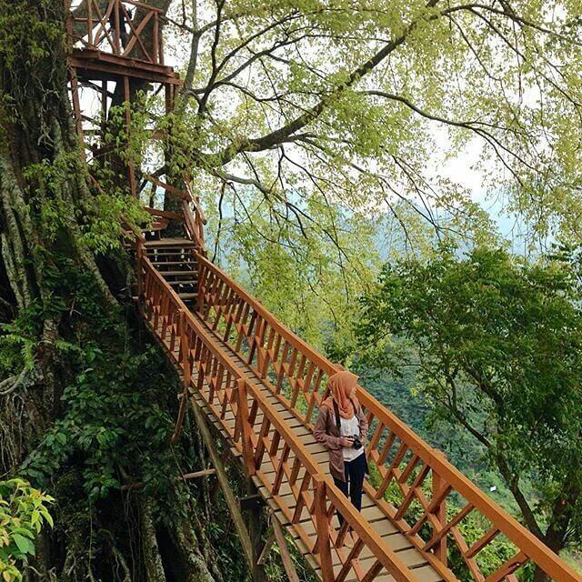 Curug Ciherang Dan Rumah Pohonnya Spot Keren Untuk Berfoto Ria Di Bogor