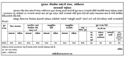 Revenue Talati recruitment, 2015