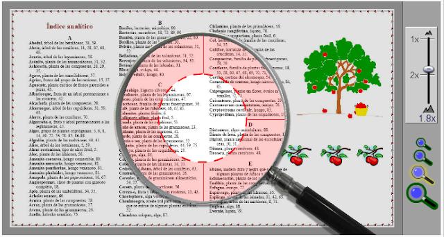 http://www.ceiploreto.es/lectura/Plan_interactivo/171/71/index.html