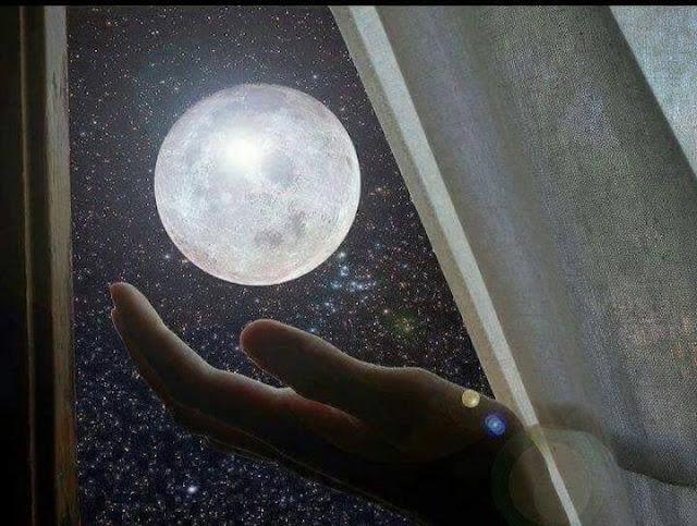 Evolução da Vida, Evolução, Luar para inspirar, Luar, Asas da Vida, Lua, Razão versus Coração, Sem amor nada tem valor, Winston Churchil,Reflexão,