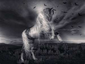 Image result for ghost horse