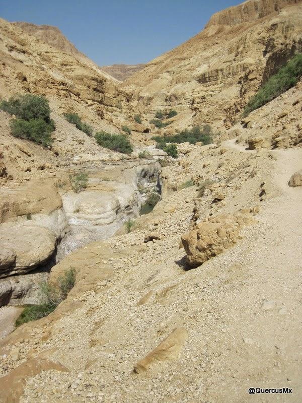 Entrada al cañón Wadi Arugot por sendero marcado